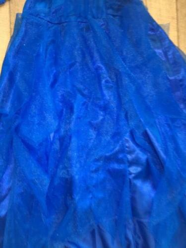 Disney Descendants----*Evie Gown