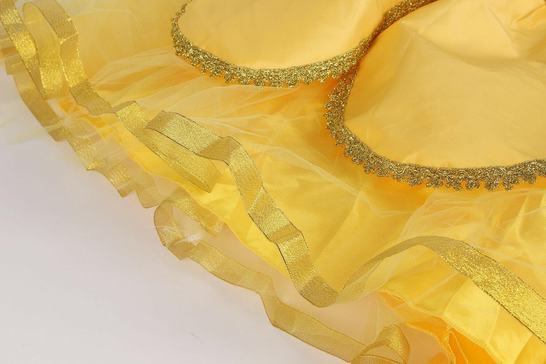 Girls Dress Fancy Costumes Ball Gown