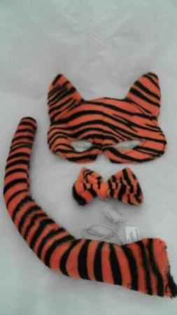 Tiger Costume Kit Orange Black Girls Kids Accessories Animal